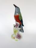uccello2